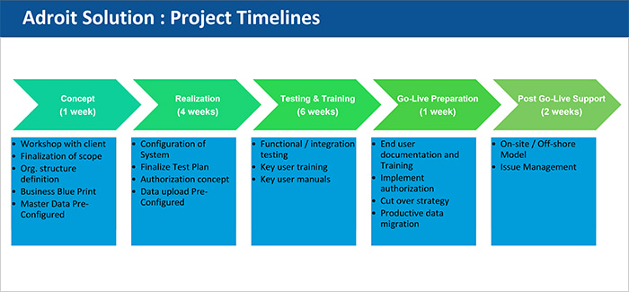 Adroit Solution : Project Timelines